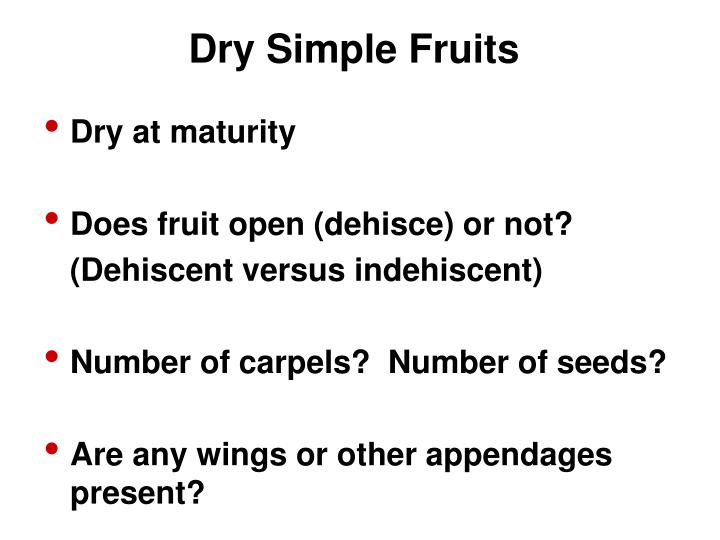 Dry Simple Fruits