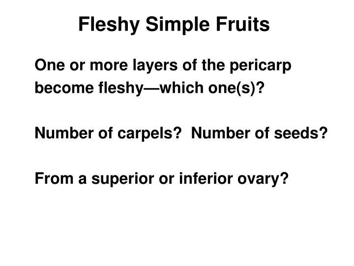 Fleshy Simple Fruits