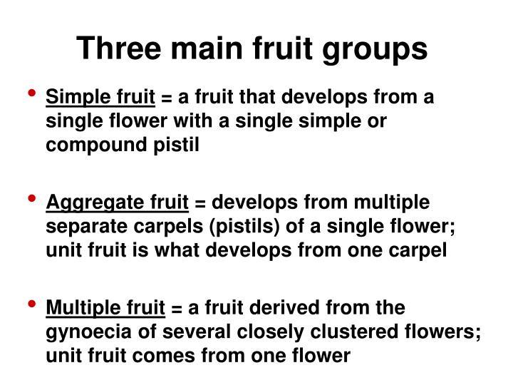 Three main fruit groups
