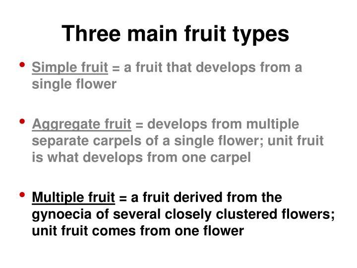 Three main fruit types