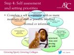 step 4 self assessment and setting priorities
