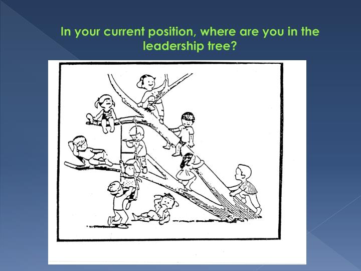 In your current position, where are you in the leadership tree?