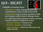10 9 sight3