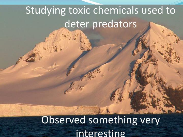 Studying toxic chemicals used to deter predators