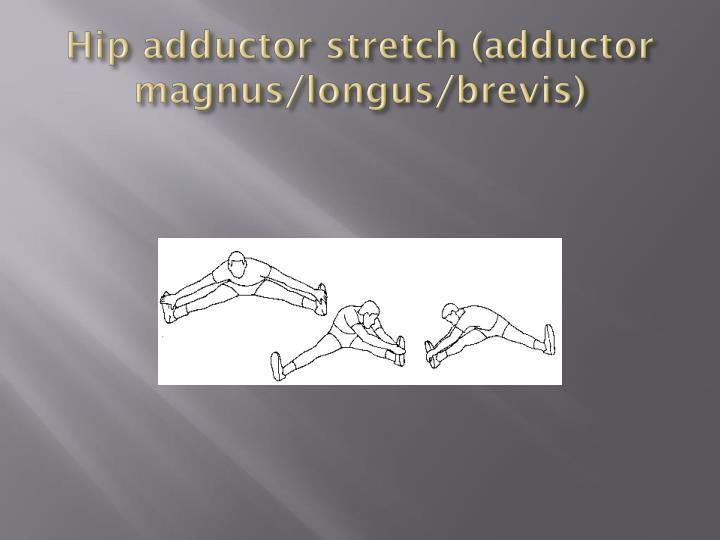 Hip adductor stretch (adductor