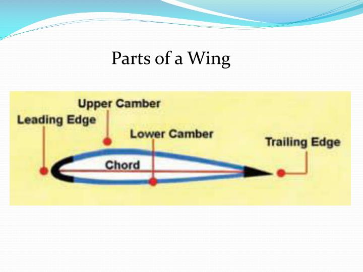 Parts of a Wing