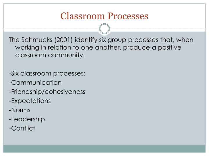 Classroom Processes