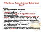 what does a trauma informed school look like1