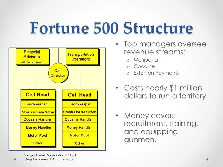 Fortune 500 Structure
