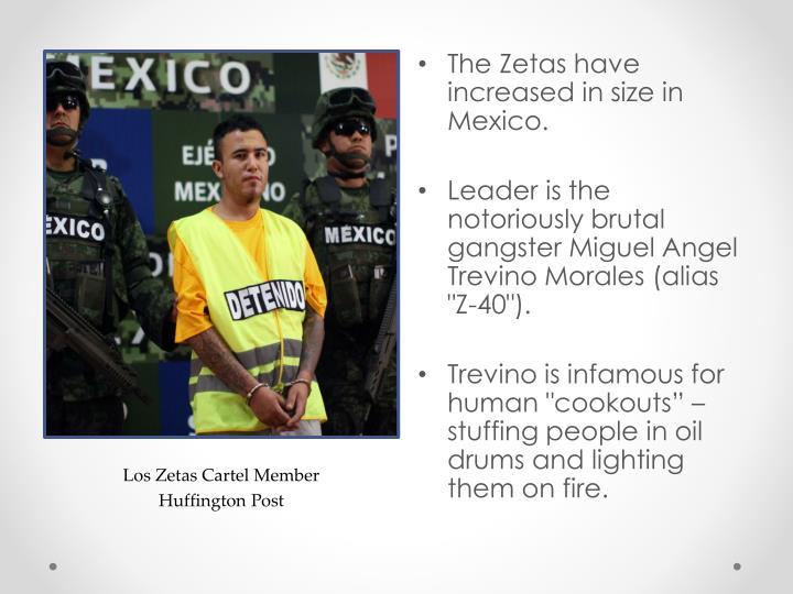 Los Zetas Cartel Member