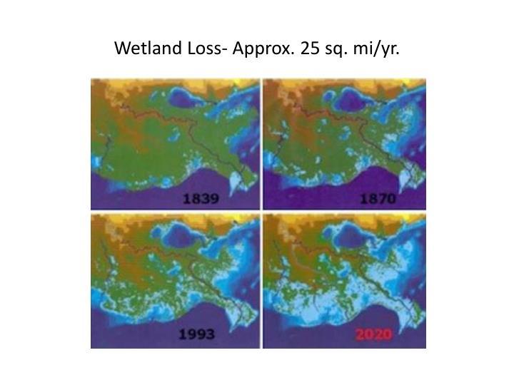 Wetland Loss- Approx. 25 sq. mi/yr.