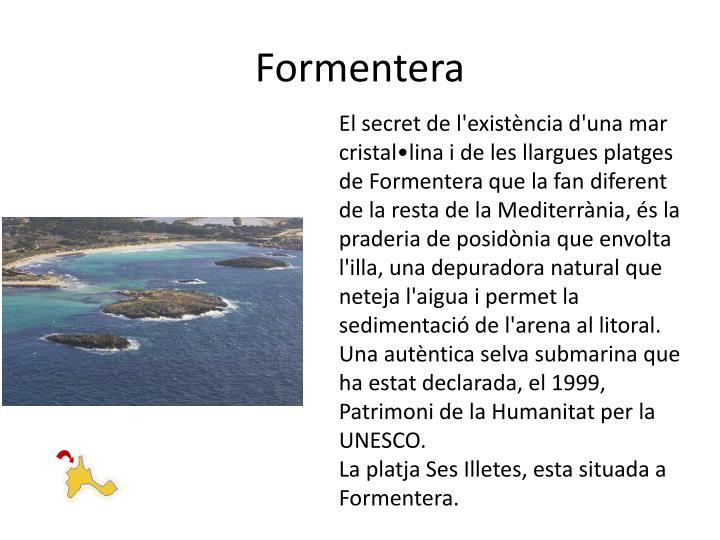 Es lloc tranquil on fugir de l'estrès i de la massificació; gaudint de l'illa passejant en bicicleta o banyant-se en algun lloc dels seus més de 20 km de platges d'arena blanca i aigües de transparència infinita, on es possible practicar tot tipus d'esports nàutics. El secret de l'existència d'una mar cristal•lina i de les llargues platges de Formentera que la fan diferent de la resta de la Mediterrània, és la praderia de posidònia que envolta l'illa, una depuradora natural que neteja l'aigua i permet la sedimentació de l'arena al litoral. Una autèntica selva submarina que ha estat declarada, el 1999, Patrimoni de la Humanitat per la UNESCO.
