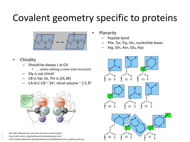 Covalent geometry specific to proteins