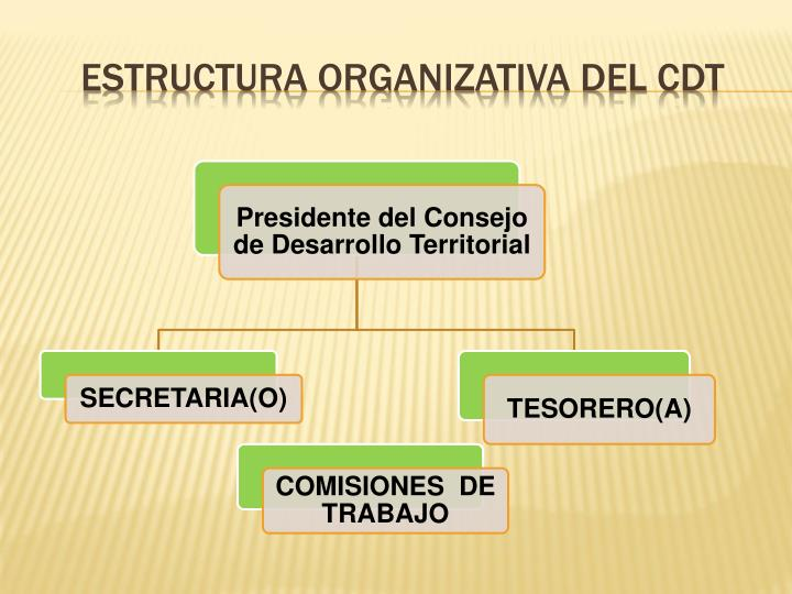 ESTRUCTURA ORGANIZATIVA DEL CDT