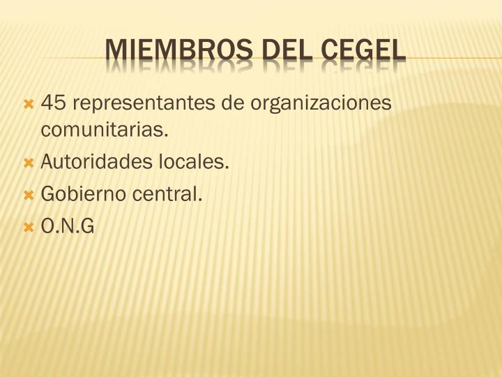 45 representantes de organizaciones comunitarias.