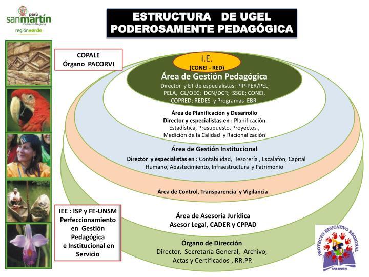 ESTRUCTURA   DE UGEL