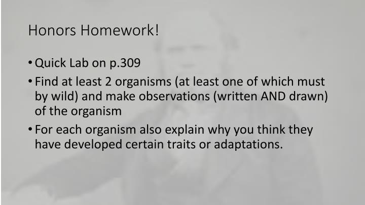 Honors Homework!
