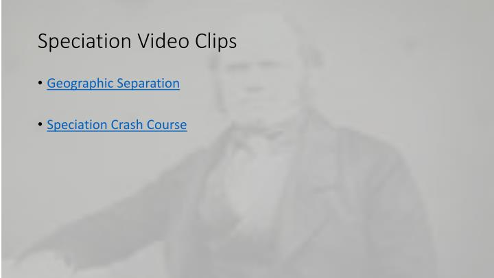 Speciation Video Clips