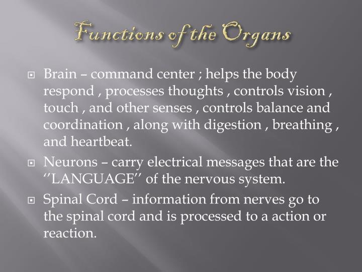 Functions of the Organs