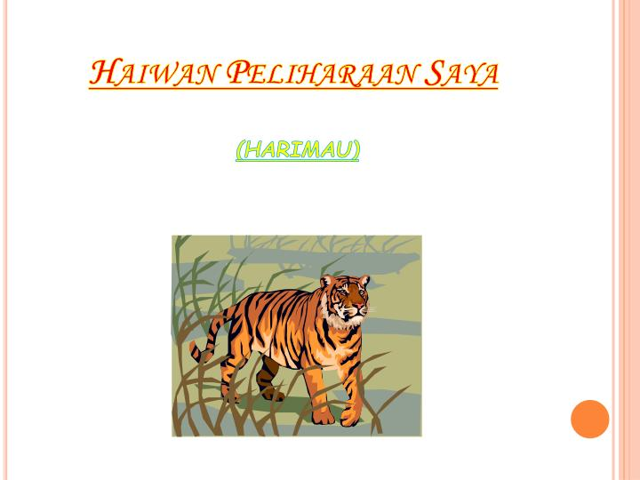 Haiwan
