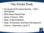 hay groups study