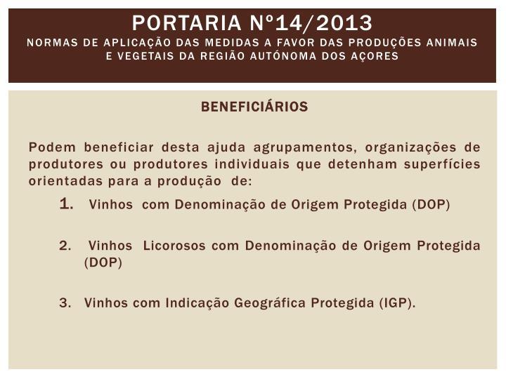 Portaria nº14/2013
