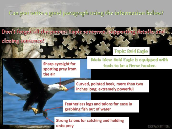 Can you write a good paragraph using the information below?