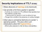 security implications of ttl 8 bits