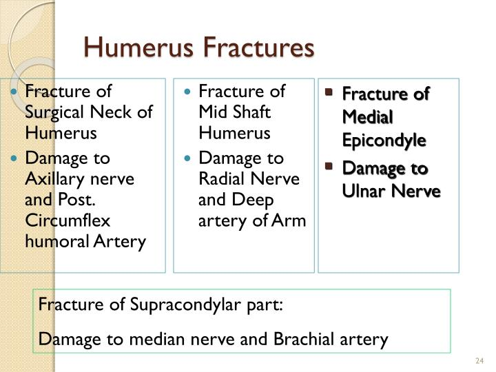 Fracture of Surgical Neck of Humerus