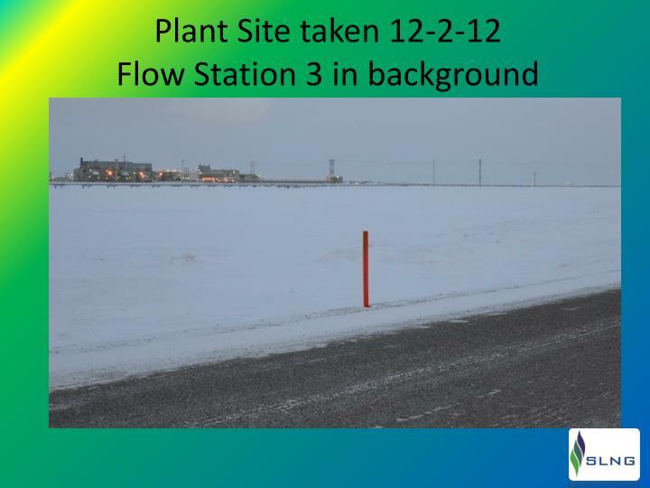 Plant Site taken 12-2-12