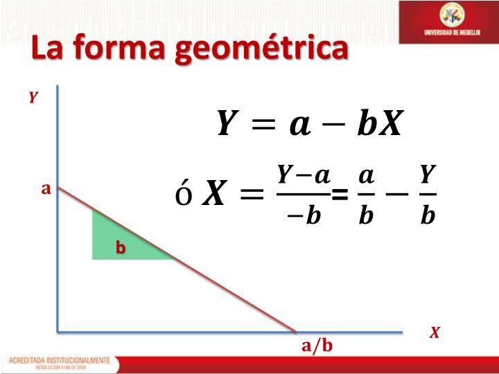 La forma geométrica