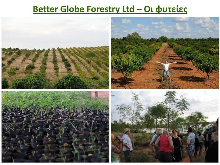 Better Globe Forestry