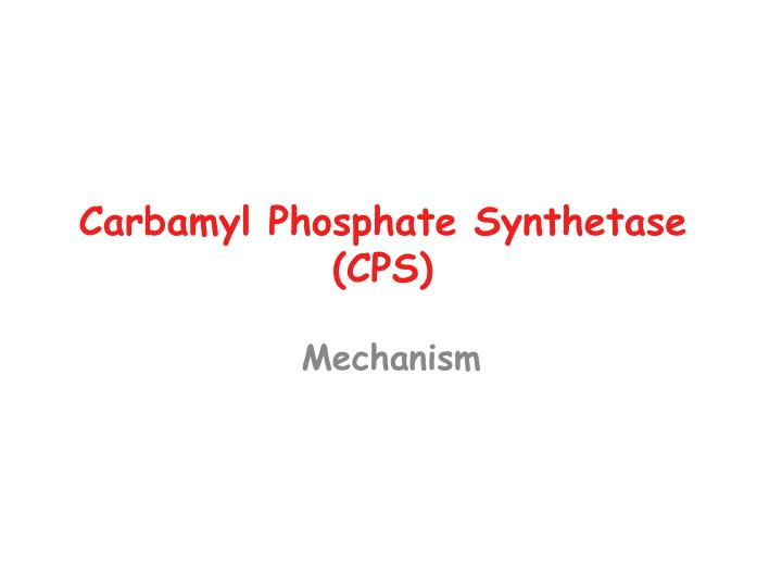 Carbamyl Phosphate Synthetase (CPS)