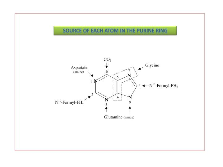 Source of each atom in the