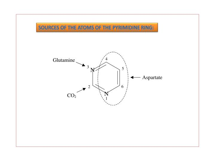 Sources of the atoms of the