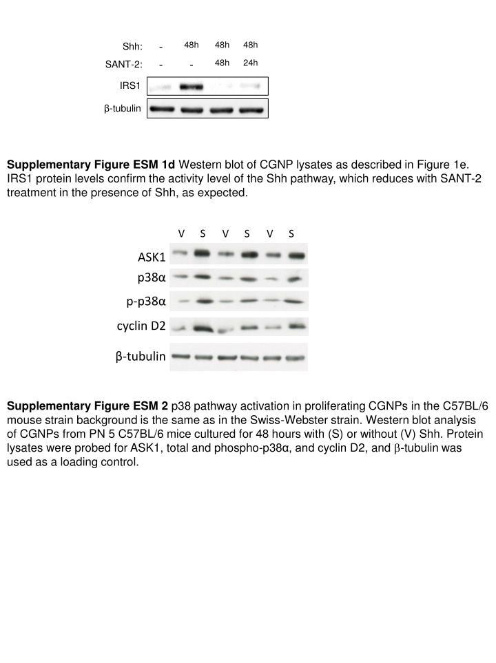 Supplementary Figure ESM 1d