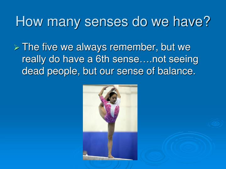 How many senses do we have?