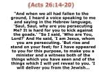 acts 26 14 20