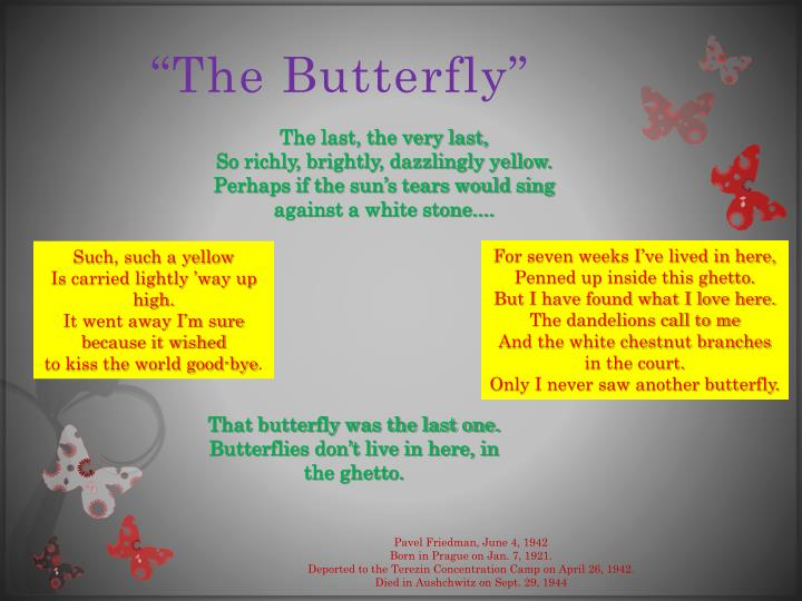 """""""The Butterfly"""""""