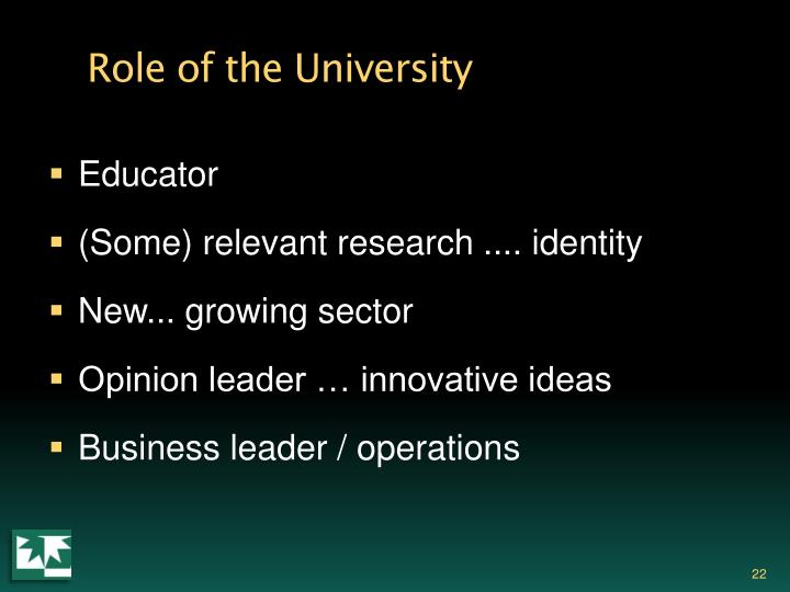 Role of the University