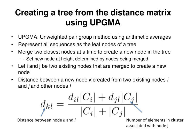 Creating a tree from the distance matrix using UPGMA