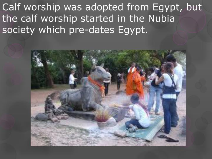 Calf worship was adopted from Egypt, but the calf worship started in the Nubia society which pre-dates Egypt.
