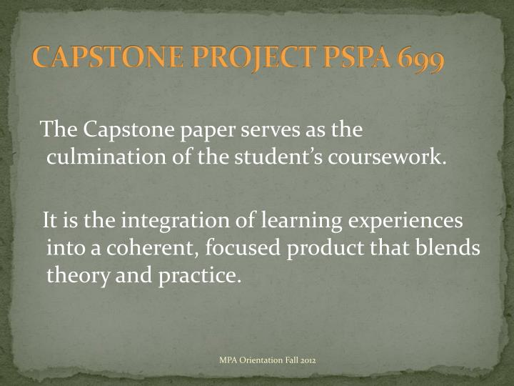 CAPSTONE PROJECT PSPA 699