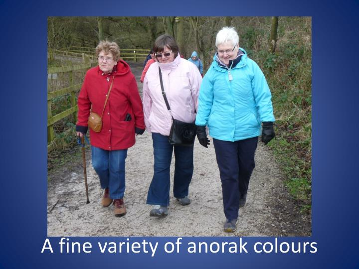 A fine variety of anorak colours