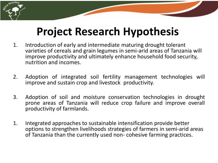 Project research hypothesis