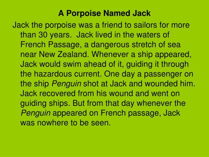 A Porpoise Named Jack