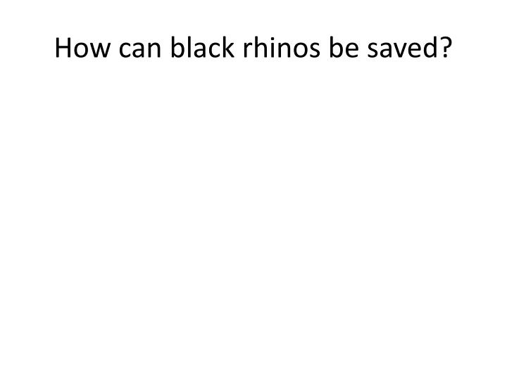 How can black rhinos be saved?