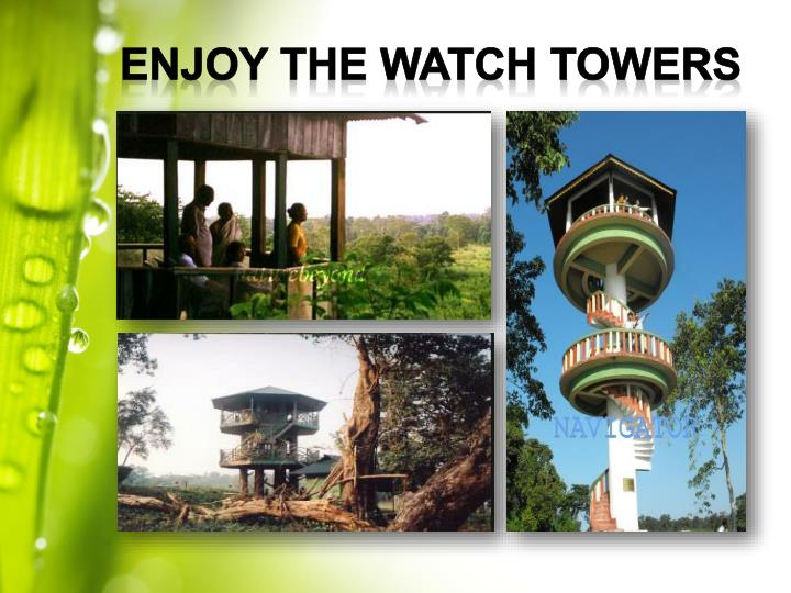 Enjoy the Watch towers