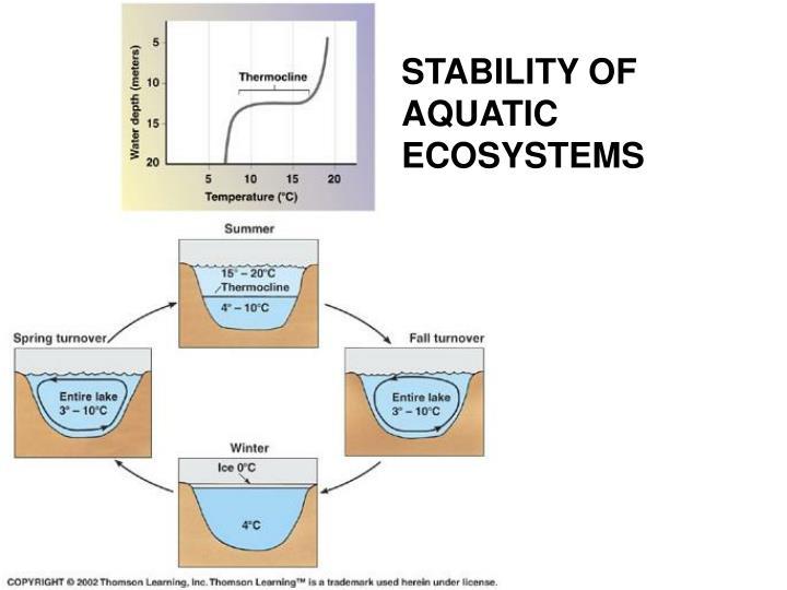 STABILITY OF AQUATIC