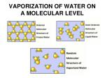 vaporization of water on a molecular level